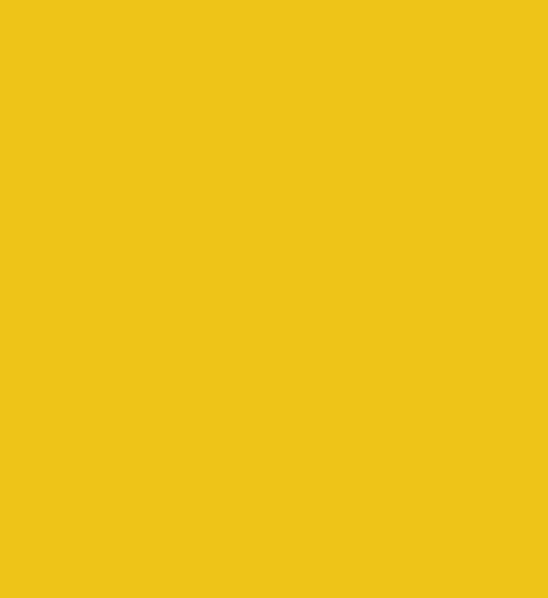 Neighborhood 91